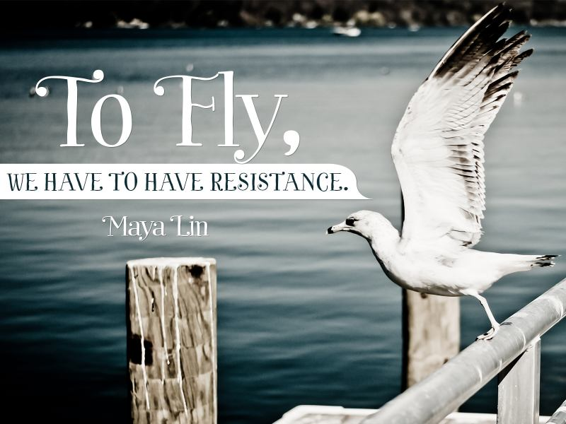 To fly we have to have resistance